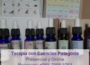 Terapia floral y vibracional para niños y adultos en renca