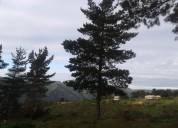 Terrenos parcela laguna verde