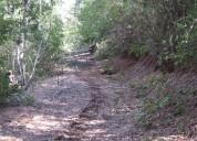 Fundo forestal de 648 hectàreas