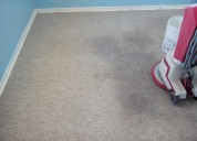 Limpieza de alfombras y tapices en gral.