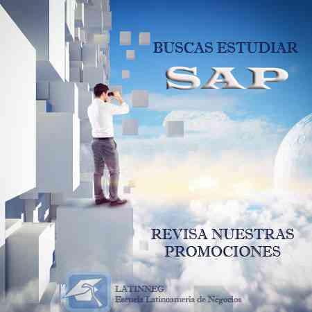 Curso de Capacitación SAP
