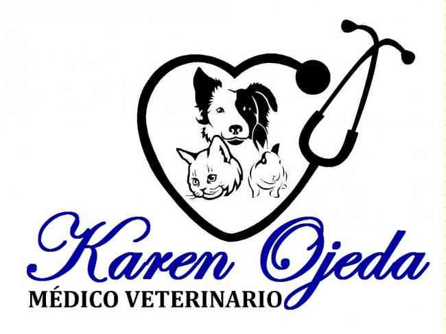 Consulta Veterinaria Karen Ojeda MV