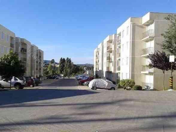 Arriendo departamento refaccionado tres dormitorios en Arica