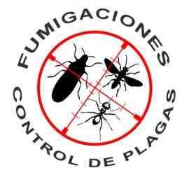 FUMIGACIONES EN viña del mar reñaca Concón 983295267
