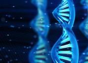 Clases particulares de biología (todas las edades)