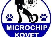 Microchip de identificación para mascotas