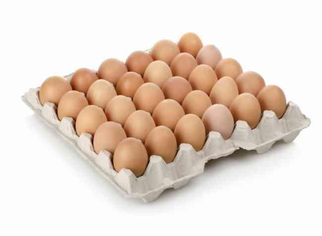 Huevos de Campo, gallinas felices