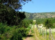 Excelente parcelas de 1 y 2 hectáreas