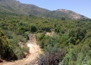 Excelente terrenos con bosque nativo