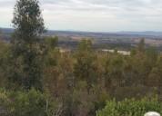Parcelación los olivos. 5000m2