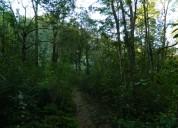 Lindas parcelas con estero, bello entorno natural, lugar tranquilo