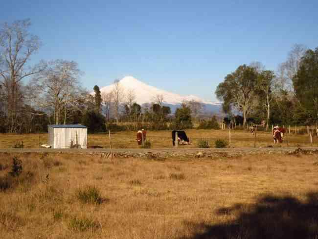 Parcela con preciosa vista al volcán, a pocos minutos de Villarrica
