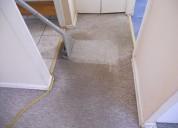 Lavado todo tipo de alfombra quilpue los pinos belloto 997798674