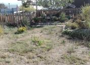 Casa con piscina , sitio y árboles frutales, a 15 min de la serena