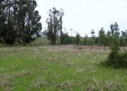 Flamante y gran terreno 1,68 hectáreas, contactarse.