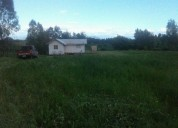 Excelente parcela con cabaña de una hectárea de terreno, talca