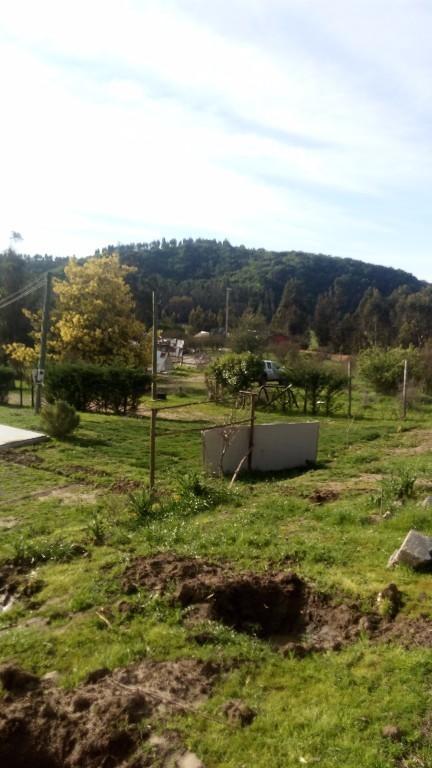 vendo Excelente terreno de 2 hectareas