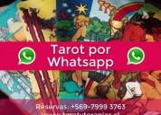 lectura tarot online a todo chile $10.000