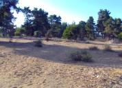 Terreno en reñaca vendo
