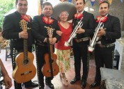 Musicos artistas mariachi sal y tequila