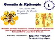 Apiterapia medicina con veneno de abejas apitoxina
