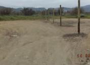 Vende 6 hectareas dividida en 12 lotes.