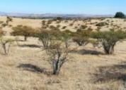 Excelente parcelas valle de colchagua