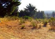 Vendo terreno laguna verde
