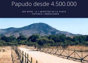 SE VENDE TERRENO EN LOS MOLLES DE 5000 MT2 La Ligua