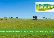 "Inmobiliaria ranquilco presenta ""estancia piraino"""
