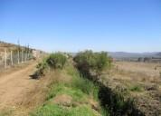 Vendo en serena parcela 5000mts2 sector el romero