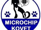 Microchip de identificación de mascotas