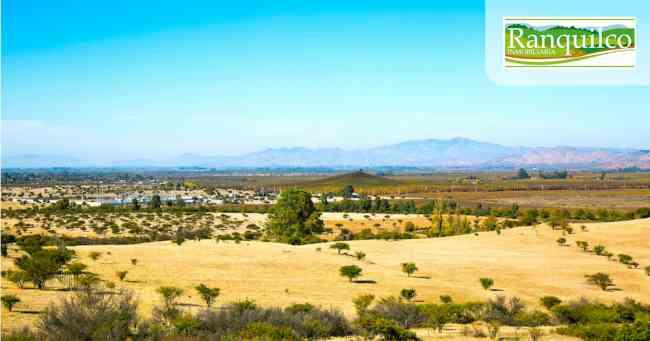 Proyecto Aires del Chequen !Exito de Ventas!