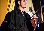 clases de violin particulares en iquique