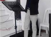 Profesor de violin a domicilio en santiago