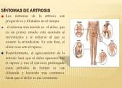Apiterapia tratamiento sanar con abejas