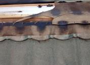Sacamos las palomas y murcielagos de su casa edificio san felipe los andes los andes