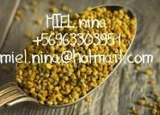 Miel y polen villa alemana