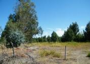 Terreno de 6 200 sector santa laura km 6 los angeles en los Ángeles