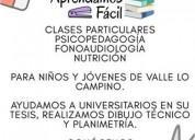 profesores de todos los ramos cursos y carreras en santiago