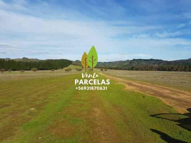 Bellas Parcelas Hacienda Pumanque