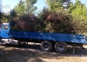 Retiró ramas todo santiago +56973677079 chicureo