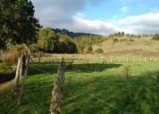 Hermoso campo en fresia