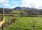 Campo hermoso de 22 hectáreas