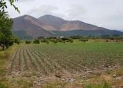 Vendo 6 hectareas -hijuelas- la calera -