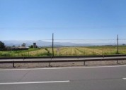 Vendo terreno industrial cruce morza 5420 m2
