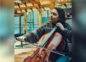 Clases de violoncello y solfeo nivel basico intermedio dirigido principalmente a ninos en santiago