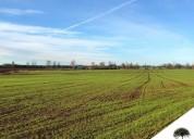 360 hectareas agricolas y ganaderas temuco