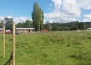 Terreno en venta 1200 m2 valdivia