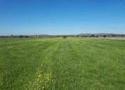 Parcelas planas listas para vivir en el campo pichidegua
